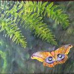 Polyphemus Moth available with wood puzzle frame